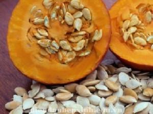 Vì sao ăn hạt bí đỏ trị giun sán ?