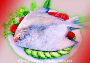 VÌ sao cá chim là vị thuốc chữa bệnh ?
